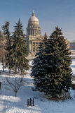 Vertical shot of the Idaho state capital in winter Royalty Free Stock Images