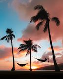 Vertical shot of silhouettes hammocks attached to palms under the colorful sunset sky
