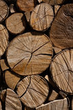 Vertical squeezed logs Stock Photos