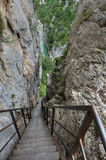 Vertical steps leading a tourist to the bottom of canyon Verdon Stock Photography