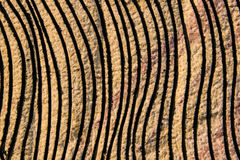 Vertical strip on sandstone. Vertical strip on sandstone background Royalty Free Stock Images