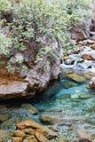 Vertical strzelający halna rzeka Zdjęcie Stock