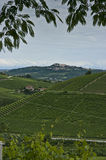 Vertical: Town & Vineyards In Piedmont, Italy Royalty Free Stock Images