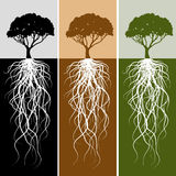 Vertical Tree Root Banner Set royalty free illustration