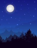 Vertical vector night landscape with spruce forest, sky with stars and full moon. Stock Photos