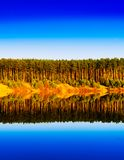 Vertical vibrant wood forest river reflections landscape backgro. Und backdrop vivid bright color rich day summer sky clear russia midland smooth composition royalty free stock photography