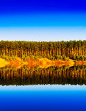 Vertical vibrant wood forest river reflections landscape. Background backdrop stock photography