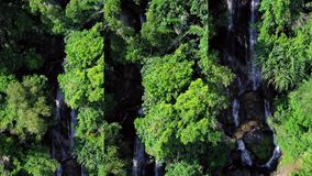 Vertical Video for Social Media Applications on Mobile Devices. Aerial View of Tropical Waterfall in Lush Green Foliage. Shot with a DJI Mavic fps29,97 4k stock video