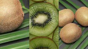 Vertical Video for Social Media Applications on Mobile Devices. Fresh Raw Exotic Tropical Kiwi Fruits also called. Chinese Gooseberrys Rotating on Palm Tree stock video footage