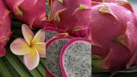Vertical Video for Social Media Applications on Mobile Devices. Fresh Raw Exotic Tropical Thai Dragon Fruit also called. Pitayas Rotating on Banana Leaf shot stock footage