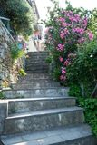 Vertical View of Alley in the Town of Riomaggiore stock images
