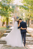 The vertical view of the kissing newlywed couple while walking in the park. The vertical view of the kissing newlywed couple while walking in the park Stock Photos