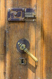 Vertical view with old doors closeup. Old doorknob at wood front Stock Image