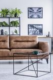 Vertical view of spacious living room with comfortable leather settee, coffee table and industrial posters. On the white wall stock photography