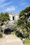 Vertical view of Tulum ruins. Famous archaeological ruins of Tulum in Mexico in spring royalty free stock photography