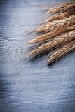 Vertical view view on bunch of wheat ears Stock Photo