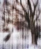 Vertical vivid crystallized tree dramatic abstraction Stock Photo