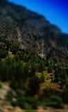Vertical vivid summer toy mountain landscape bokeh Royalty Free Stock Image