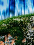 Vertical vivid vibrant moss abstract backdrop Royalty Free Stock Images
