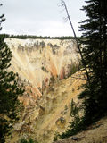 Vertical wall of the Grand Canyon of Yellowstone. Vertical rock outcrop of the Grand Canyon of the Yellowstone (Wyoming, USA Royalty Free Stock Photos