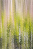 Vertical wallpaper on forest reflected in a lake Stock Photo