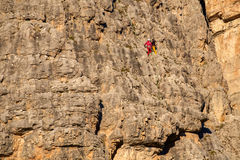Vertical walls with climber Cinque Torri Royalty Free Stock Images