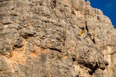 Vertical walls with climber Cinque Torri Stock Images