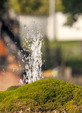 Vertical water jet Royalty Free Stock Image