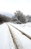 Vertical winter road Royalty Free Stock Images