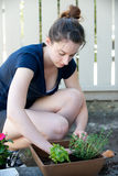 Vertical of woman planting plants. In the shade Royalty Free Stock Images