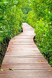 Vertical wood bridge Stock Photos