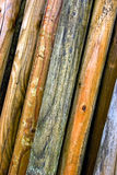 Vertical wood log background Royalty Free Stock Photo