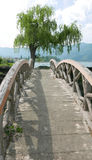 Vertical wooden bridge footpath Royalty Free Stock Photography