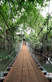 Vertical Wooden suspension bridge cross river Stock Image