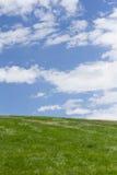 Vertical zielony i błękitny natury tło Zdjęcie Stock