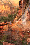 Vertical Zion landscape Royalty Free Stock Photography