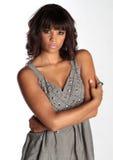 Verticale élégante de brunette Images libres de droits