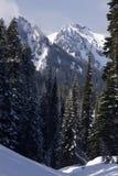 Verticale alpino Fotografie Stock