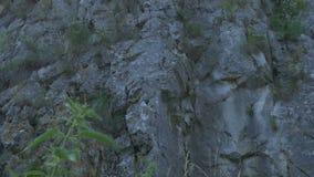 Verticale bergklip stock footage