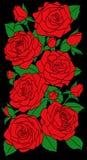 Verticale bloemensamenstelling. Mooie rode rozen met knoppen en groene bladeren op een zwarte Royalty-vrije Stock Afbeeldingen