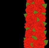 Verticale bloemensamenstelling. Mooie rode rozen met knoppen en groene bladeren op een zwarte Royalty-vrije Stock Foto's