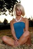 Verticale blonde Images libres de droits