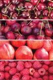 Verticale collage van rode vruchten, Stock Foto's