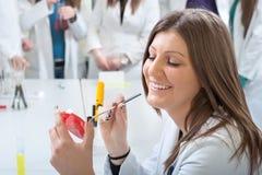 Verticale d'étudiant en médecine photos stock