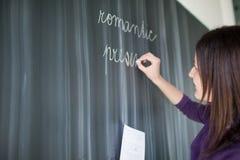 Verticale d'étudiant universitaire dans une salle de classe Photographie stock libre de droits