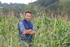 Verticale d'agronome photos libres de droits