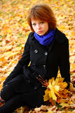 Verticale d'automne Photo stock