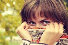 Verticale d'automne Photos stock
