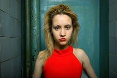 Verticale d'beaux-arts de fille élégante Photos libres de droits