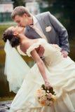 Verticale d'embrasser des nouveaux mariés Image libre de droits